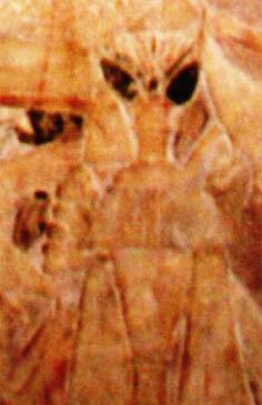 No templo de Saqquara, Egito, temos o relevo desse curioso personagem